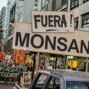 """""""Es una ley que avanza en la privatización de las semillas favoreciendo a las empresas del agronegocio"""""""