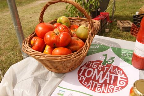 Se realizó la Fiesta del Tomate Platense