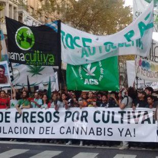 """Basta de presos por cultivar"""