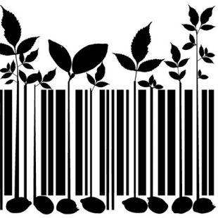 «El impacto es inmediato a los consumidores»