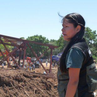 """Inundaciones:  """"Argentina es el noveno país que más destruye bosques en el mundo"""""""