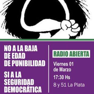 No a la Baja: «De ninguna manera la privación de la libertad a los chicos mejoran las condiciones»