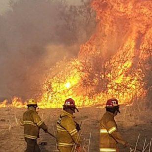 Más de 17500 hectáreas quemadas
