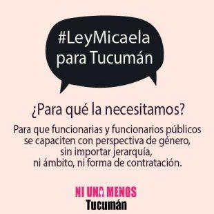 Ley-Micaela-Tucuman.jpg