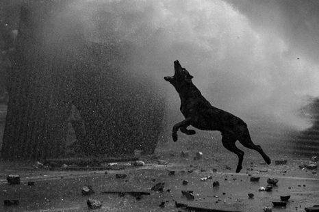 Fotografes x los barrios: «Un aporte directo en este momento entre el espanto y la ternura»