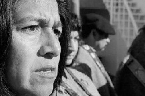 «El pueblo Mapuche pasó de ser un enemigo del Estado a tener un área en el Ministerio»