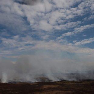 «No reaccionamos al incendio hasta que el humo no nos dejó respirar»