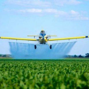 «Hay que mostrar que la agroecología es viable económica, ambiental y socialmente»
