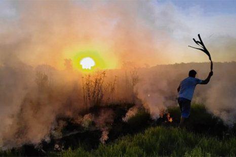 """Rosario: """"Tenemos la ciudad invadida de humo, la contaminación aérea es muy grave"""""""