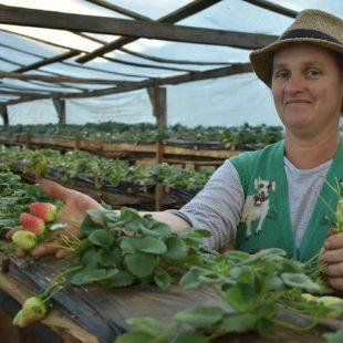 Yanina Settembrino: «Las mujeres rurales son las que movilizan al sector de la agricultura familiar»