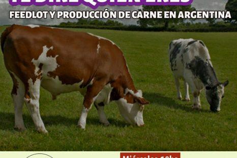 La producción de carne en Argentina