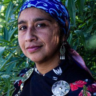 Chile: «El gatillo fácil es porque la juventud no se deja atropellar»