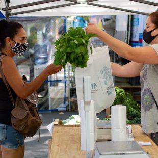 Este sábado llega Mercados bonaerenses a 13 y 32