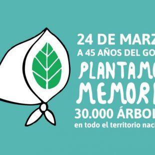 El 24 de marzo se plantarán 30 mil árboles de especies nativas en áreas protegidas