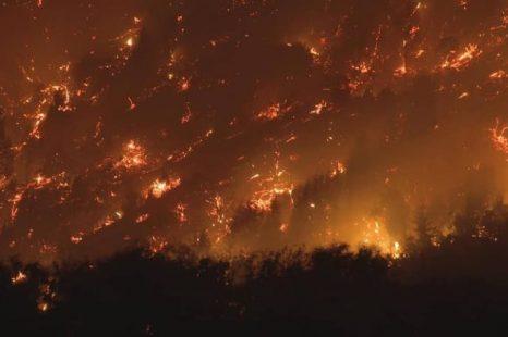 Incendios en la Patagonia: se realizará una denuncia penal