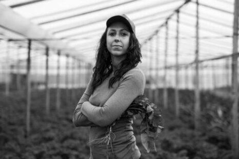 Fue lanzada la Mesa Agroalimentaria Argentina, ¿De qué trata?