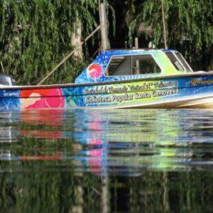 Libros que navegan por el Delta